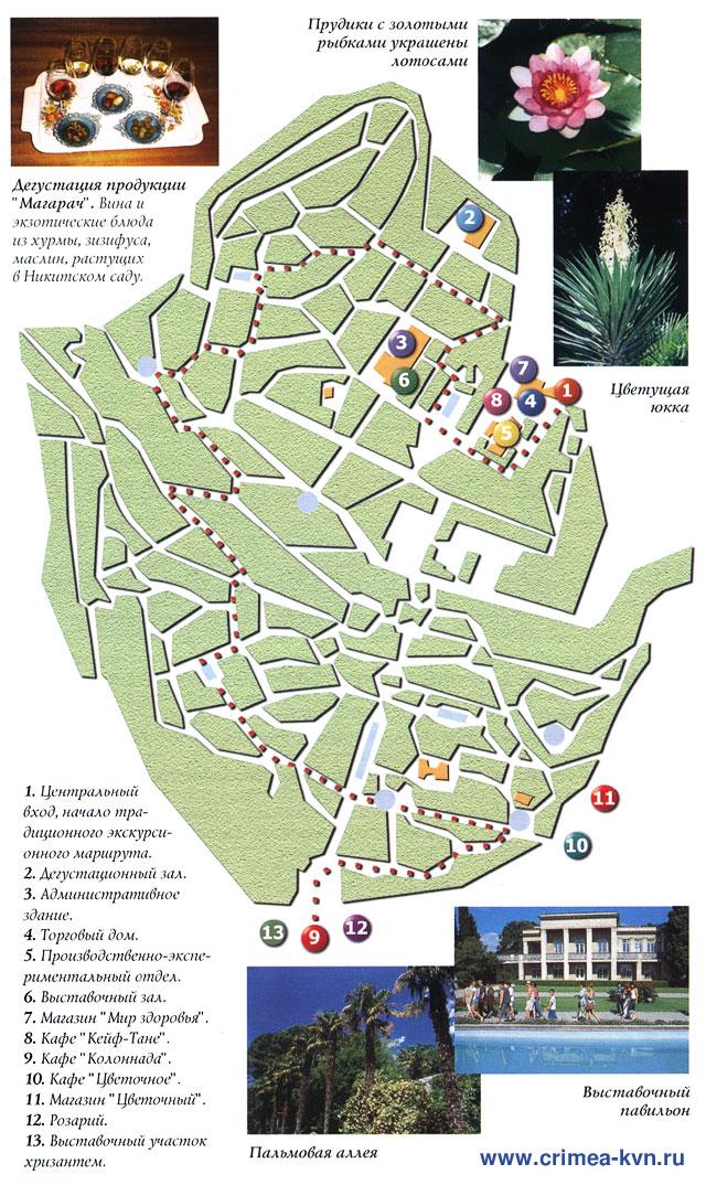 План Никитского Ботанического сада.